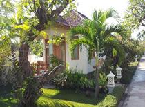 Starlight Bali, Lovina